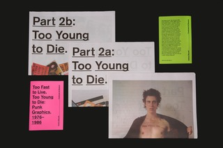 <em>Too Fast to Live, Too Young to Die: Punk Graphics, 1976-1986</em>, Exhibition Catalog, Designed with Andrew Blauvelt, Cranbrook Art Museum, 2018   Photo by PD Rearick